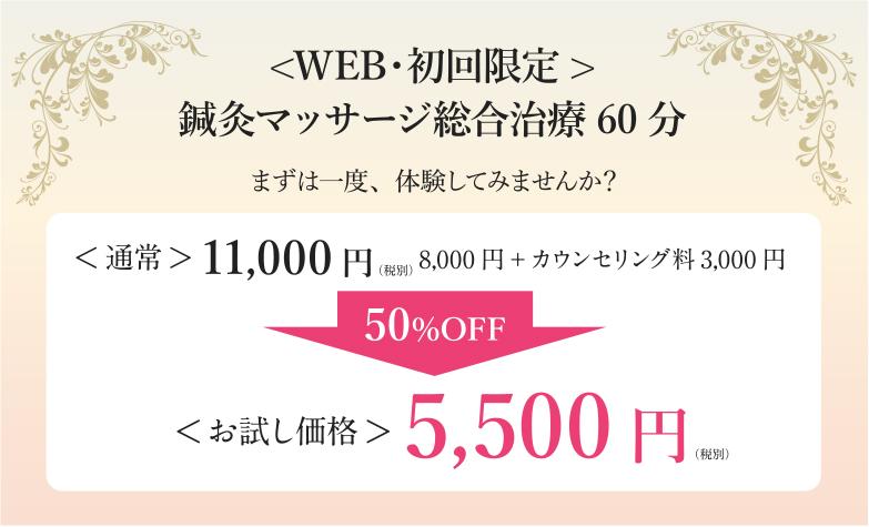 web・初回限定!鍼灸マッサージ総合治療60分5,500円(通常11,000円)