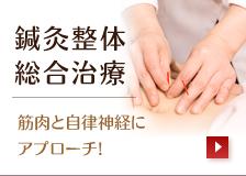 鍼灸整体・総合治療